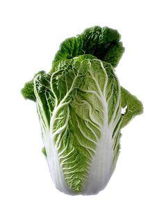( 300 thru 2 LB seeds) Pak Bok Choi Chinese Cabbage Salad, Cabbage Plant, Cabbage Seeds, Whole Body Cleanse, Cleanse Your Liver, Body Detox Cleanse, Cleanse Diet, Pak Choï, Toxic Foods