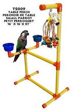 Fun Max Portable Tabletop Stand - Small A portable table top perch for small… Parrot Perch, Parrot Bird, Bird Perch, Bird Aviary, Nutella, Bird Play Gym, Parrot Play Stand, Tabletop, Diy Bird Toys