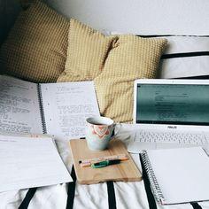 tanya's studyblr — wylanvnck:   monday to thursday - semester six,...