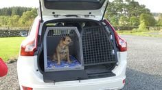 2015 Model TransK9/B23 in Volvo XC60 with Ted the Border Terrier - a great dog cage to protect the car and your pet!