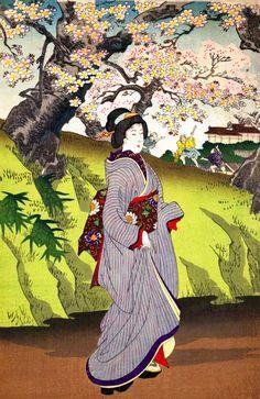 toyohara chikanobu:sakura