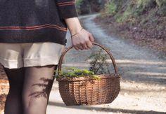 Mes activités hyggelig et slow living, pour prendre le temps de vivre en automne.