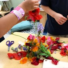 Kindergarten students dissect flowers during a spring unit. Butterflies, flowers, and more! Spring Has Sprung, Teaching Science, Grade 1, Reggio, Kindergarten, Butterflies, Students, Papillons, Preschool