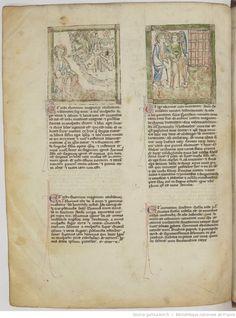 vue 44 - folio 16v