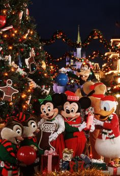Mickey& Very Merry Christmas Party at Disney World Disneyland Paris Noel, Disneyland Christmas, Disney World Christmas, Mickey's Very Merry Christmas, Christmas Feeling, Christmas Time, Christmas Tumblr, Xmas, Magical Christmas