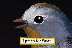 The Mincing Mockingbird Guide to Troubled Birds- Matt Adrian