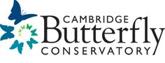 Enter a lush tropical garden and walk amongst thousands of freely flying butterflies! Escape from the cold and enjoy a vacation in a day at Cambridge Butterfly Conservatory. Youth Age, Garden Cafe, Family Getaways, Summer Memories, Event Calendar, Gift Store, Conservatory, Summer Fun, Summer Ideas
