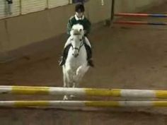 ▶ Pony Show Jumping (very cute must see) - YouTube
