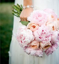 Peonies and David Austin roses...called Juliets