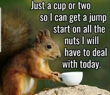 Are you searching for images for good morning quotes?Check this out for unique good morning quotes inspiration. These entertaining quotes will bring you joy. Funny Good Morning Quotes, Morning Humor, Good Morning Funny Pictures, Morning Images, Funny Signs, Funny Memes, Jokes, Memes Humor, Funny Friday Memes
