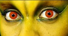 Does your Halloween costume include decorative contact lenses? If so, the Food and Drug Administration has a warning for you: Make sure you get a prescription from an optometrist or other eye care professional. Halloween Contacts, Costume Makeup, Halloween Cans, Halloween Costumes, Costume Contact Lenses, Colored Contacts, Eyes, Fun, Lol