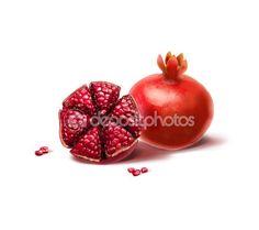 Pomegranate on white background. Digital illustration. Shana Tova, pomegranate, Rimon, Shofar, Yom Kippur, Sukkot, new year, Jewish new year — Stock Photo © sofiartmedia.gmail.com #124129926