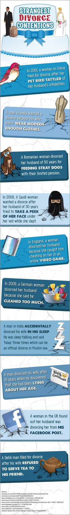 Craaazy Reasons for Divorce [Infographic]   Legal News   Lawyers.com   Divorced because the husband got caught cheating on her in an online video game was the best!