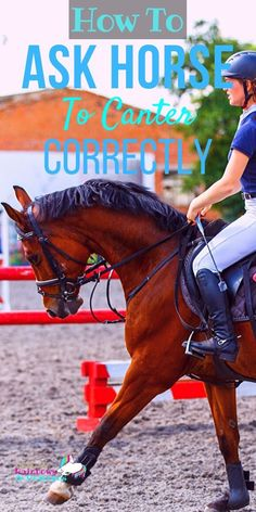 Are you struggling with getting your horse to canter? Does it feel sloppy? All over the place? Does your horse just race faster and faster in the Horse Riding Tips, Horse Tips, Dressage, Horse Exercises, Training Exercises, Horse Treats, Pet Vet, Riding Lessons, Horse Training