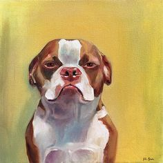 Custom oil painting pet portraits, showcasing many expressive emotions of dogs and cats School Portraits, Pet Portraits, Pet Dogs, Pets, Oil Portrait, Dog Art, Amazing Art, Boston Terrier, Oil On Canvas