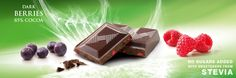 Tablet with sweeteners from Stevia, dark chocolate with berries. Cavalier the pioneer in no sugars added chocolate.