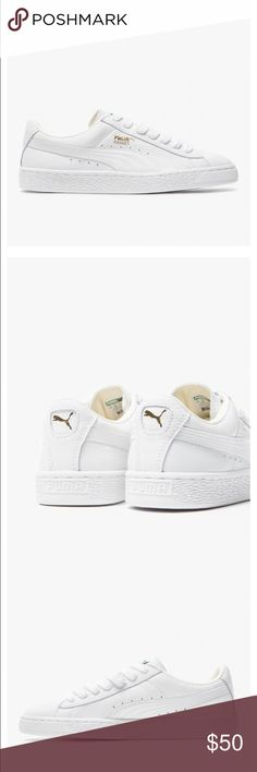 Puma Basket Classic in White Brand New.  White on white puma classic sneakers. 6.5 Puma Shoes Sneakers