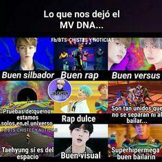 todo perfecto DNA