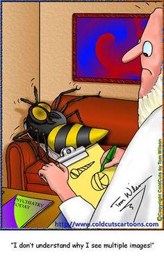 Bee Psychiatry & seeing multiple images