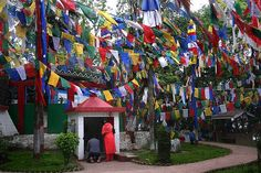 Tibetan Buddhists for centuries have planted these flags outside their homes and places of spiritual practice for the wind to carry the beneficent vibrations across the countryside.