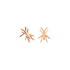 Rose gold ant studs