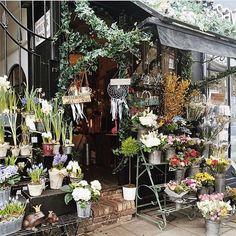Fitroy's, Primrose Hill, London 📷@mylondonfairytales beautiful virtual flowers today for all the lovely mums (mine included) @theflowerbunchdotcom #flowershop #sharingaworldofshops