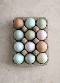 Pastel Eggs, Elizabeth Messina | Camille Styles