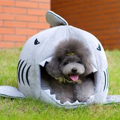 9 best fat fat beds images on pinterest dog cat dog kennels and rh pinterest com fat man's dog house fat dog hot sauce online