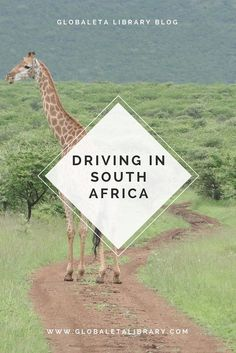 Driving in South Africa - A Blog Post from GlobalETA Travel & Outdoors Digital Library & Blog at www.globaletalibrary.com