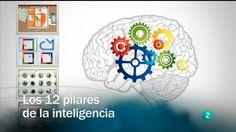 Vídeo  - Los 12 pilares de la inteligencia