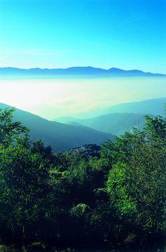 Seize the opportunity to discover the secrets of Halkidiki like Holomontas mountain. Location: Halkidiki, Greece