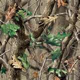 Image detail for -Realtree APG | Realtree ®