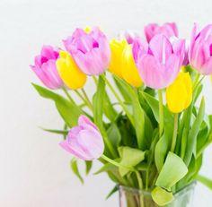 """""""Enquanto as flores não brotam no asfalto semeie amizade em seu coração, assim terá um jardim somente seu."""" (Edmilton Pedroso)"""