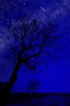 kassandracreations: kassandracreations: Twinkle, twinkle, little star,How I wonder what you are. Wallpaper Tumblrs, Blue Aesthetic Pastel, Blue Hour, Blue Wallpapers, Blue Walls, Midnight Blue, Night Skies, Shades Of Blue, Aesthetic Wallpapers