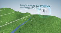 Pregopontocom Tudo: Drones ajudam a combater o  desmatamento plantando 100 mil árvores por dia ...
