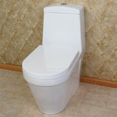 Amazon.com: Kaly Dual-Flush Siphonic One-Piece Toilet with Concealed Trapway - White: Home Improvement
