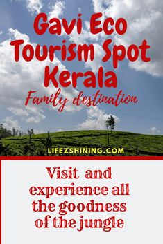 Gavi Eco Tourism Spot the ideal destination to visit with family, in Pathanamthitta district,KFDC departmet Kerala conducts trekking boating safari etc read Jungle Pictures, Travel News, Travel Hacks, Alcohol Is A Drug, Family Destinations, Travel Planner, Travel Light, Cheap Travel, Vacation Trips