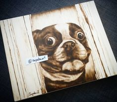 Here's Johnny! 8x10 wood panel #woodart #woodburning #pyrography #pyrograph #wood #woodwork #art #artstagrams #dog #pet #dogart #petart #pug #ilovedog #dogstagram #ilovepug #shining #heresjohnny #halloween #halloweenart #scarydog #torontoartist #torontoart #arttoronto #dogartist #torontoartwork #localart #localartist #torontolocalartist #sayakaart