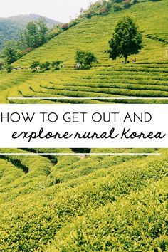 How to get out and explore rural Korea!