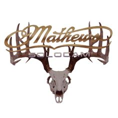 Mathews Solocam.  I love my new bow! Thank you, Tony Jr. ;-)