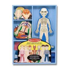 Melissa & Doug Magnetic Human Body Anatomy Play Set (Anatomically Correct Boy and Girl Magnets, 24 Magnetic Pieces and Storage Tray, Great Gift for Girls and Boys - Best for 5 Year Olds and Up) Human Body Activities, Preschool Activities, Body Preschool, Stem Preschool, Montessori Science, Montessori Homeschool, Homeschool Curriculum, Human Body Unit, Best Educational Toys