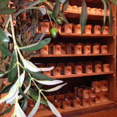 Mia Colore gepresenteerd bij Meubelpark de Bongerd in Kesteren. Wine Rack, Plants, Furniture, Home Decor, Homemade Home Decor, Bottle Rack, Flora, Home Furnishings, Plant
