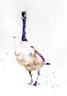 This is a limited edition (only 250 will be produced in each size) print of my original watercolour painting CANADA GOOSE. I sign and number each