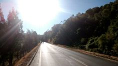 Camino  Pastene