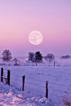 Just as the sun sets and the moon rises, let's take a walk in the crisp, still air. Let's listen to the crunch of the snow under warm boots and feel the kiss of the cool air on cheeks and noses. It's a good night to burrow deep under toasty blankets or soft, deep snow! #amazing #photos