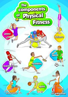 Check out these 9 colourful posters for you to print out and out up at your sports hall. Great for all grades to learn about the different components of Phyiscal Fitness in sport