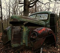 rusty gold. Kendall, this reminds me of the place we found in Isanti :)