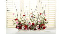 dandelion ranch valentine's day garden screen