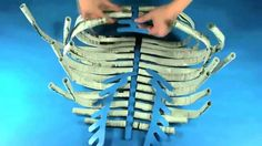 ROYLCO Newspaper Skeleton Made entirely of newspaper rods, the Newspaper Skeleton is an excellent science-art-math resource that can be used as a huma. My Science Project, Science Projects, School Projects, Projects For Kids, Science Art, Halloween Diy, Halloween Decorations, Human Skeleton Model, Skeleton Craft
