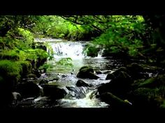 ▶ Relax-Nature Sounds-8 Hours-Waterfalls-Bird Songs-Sleep, Relaxation, Meditation and Study - YouTube